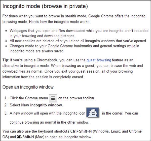 Incognito Description